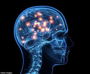 Понятие как форма мышления