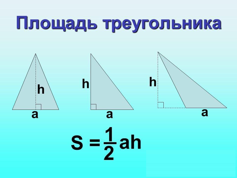 площадь прямоугольного равна