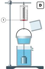 Урок 2: Закон Архимеда (Эксперимент)