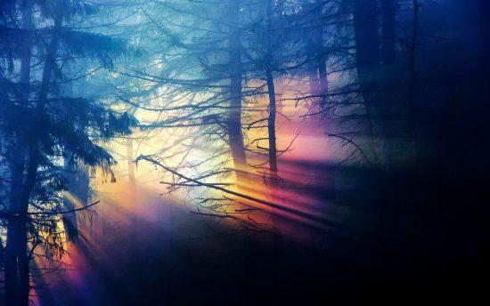 Источники света. Прямолинейность распространения света.